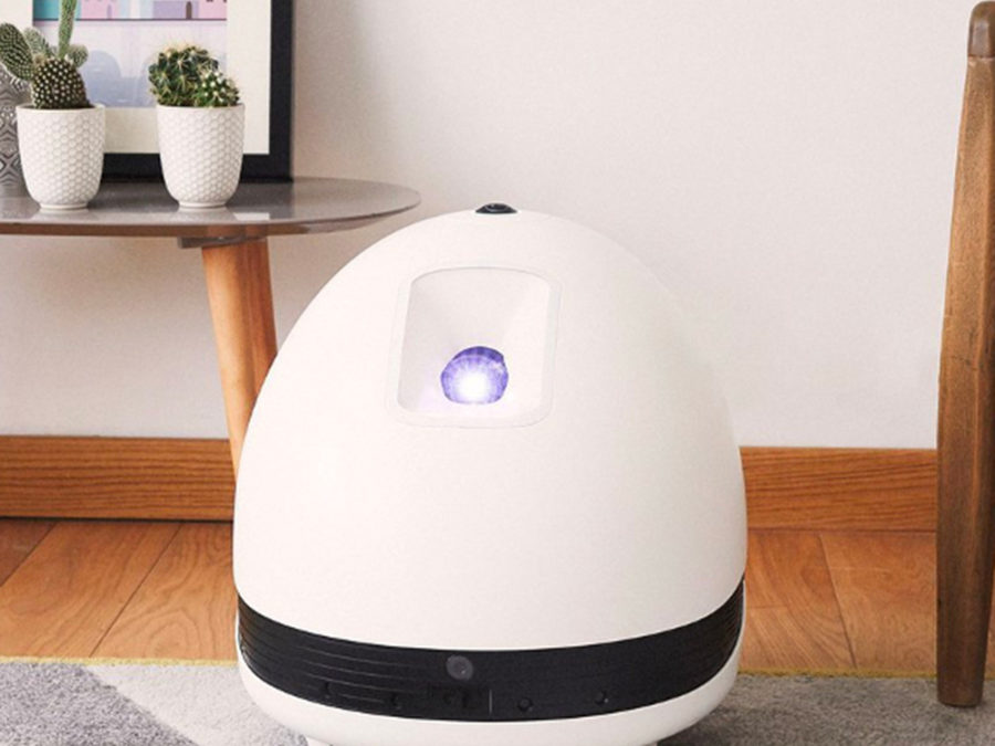 robot multimedia